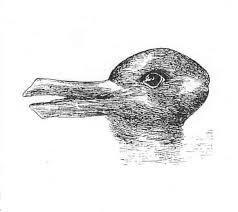Иллюстрация 3. Иллюзия «заяц-утка».
